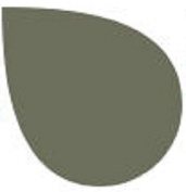 Rit Fabric Dye in 141 Colours - Colour = DEEP LINCHEN GREEN