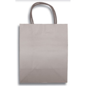 30cm x 23cm Medium Silver Kraft Tint Paper Party Supplies Favour Gift Bags with Handle