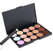 CRAVOG 15 Colours Professional Facial Make Up Cream Concealer Palette With Brush B5UT