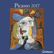 Picasso 2017