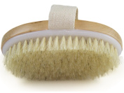 Skin Body Brush - Dry Skin And Toxin Removel - Cellulite Treatment