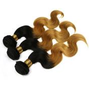 Xuchang Eecamail Brazilian Virgin Remy Human Hair Extension Weave 5Bundles 500g Two- Tone Colour Body Wave Hair#1b/27