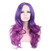 "Rise World 26 "" 65 cm Women's Long Wavy Curly Carve Full Hair Wig Purple Ombre"