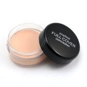 Popfeel Concealer Cream for Under Eye & Face Makeup - All Natural, 88% Organic, Vegan, Gluten Free, No Animal Cruelty, No Toxic Chemicals, Safe for Sensitive Skin