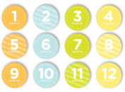 Tiny Ideas First Year Belly Stickers