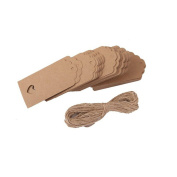 VORCOOL Kraft Paper Gift Tags with String Wedding Brown Rectangle Craft Hang Tags with 10M Rope Brown 100pcs 10.5*5.5cm