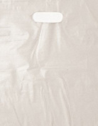 100 Frosted 9x12 Die Cut Plastic Bag with Crafting Insert