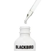 Blackbird - Natural Beard Oil (The Future) (.25 oz / 7.4 ml