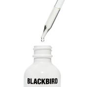 Blackbird - Natural Transparent Shave Oil (.25 oz / 7.4 ml