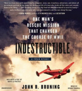 Indestructible [Audio]