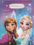 Disney Frozen Elsa & Anna Girls Party bags - purple