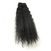 Black Hair Extensions Star 16 French WVG 1B