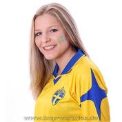 10 x Sweden Temporary Tattoo Set - Sweden Fan Tattoo Flag - Euro 2016