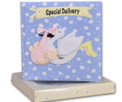 Baby Boy Record Book & Keepsake Box - Special Delivery