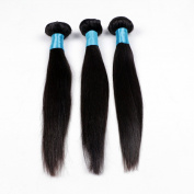 BLY Hair 100% Virgin Malaysian Human Hair Extensions STRAIGHT HAIR 3-Pack Bundle,300g Total(100g each),Grade AAAAAA Natural Black Colour Full Head 12 14 41cm