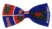 Sports Themes Hair Bow Collection-UF Gators-FSU Seminoles