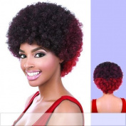 AFRO (Motown Tress) - Heat Resistant Fibre Full Wig in DARKEST BROWN by Oradell International Corporation