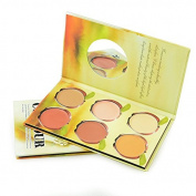 Ucanbe Contour Kit 6 Colour Contouring Palette Highlighting Foundation Bronzer Concealer Cream Makeup Set