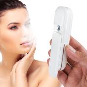 Denshine® USB Charging Nano Mist Spray Handy Atomization Mister Face Facial Moisturising