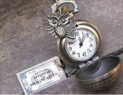 Enchanted Steampunk Golden Snitch Necklace with Owl,train Ticket----i Open At the Close
