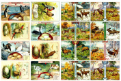 Decoupage Paper Pack (10sheets A4 / 20cm x 28cm ) Deers Elk and Birds FLONZ Vintage Ephemera Trading Card