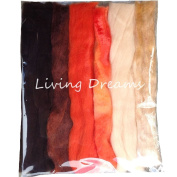Living Dreams Multi Fibre Sampler for Felting, Spinning, Doll Making, Paper Crafts and Embellishments. Super soft Merino Roving, hand dyed Lustre Wool and sparkling Firestar Fibre. 30ml, Orange
