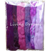 Living Dreams Multi Fibre Sampler for Felting, Spinning, Doll Making, Paper Crafts and Embellishments. Super soft Merino Roving, hand dyed Lustre Wool and sparkling Firestar Fibre. 30ml, Purple