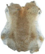 Natural Tanned Rabbit Fur Hide (25cm by 30cm Rabbit Pelt With Sewing Quality Leather)