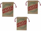 Spritz Burlap Gift Bag Special Delivery - 3 Bag Set