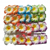 Lot 24 Hawaiian Hawaii Bridal Wedding Party Plumeria Foam Flower Hair Clips