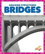 Bridges (Amazing Structures)