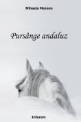 Pursange Andaluz [RUM]