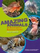 Amazing Animals of Australia's National Parks