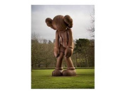 KAWS Catalogue at Yorkshire Sculpture Park