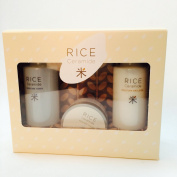 The Face Shop Rice & Ceramide Special SET [Toner, Emulsion, Cream] 3Pcs