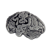 Human Brain Lapel Pin (1 Pc)