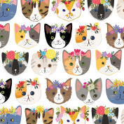 Jillson Roberts 6-Roll Count All-Occasion Gift Wrap, Kitty Cats