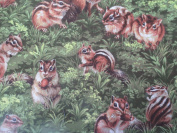 Chipmonk Holding Nuts 100% Cotton Fabric