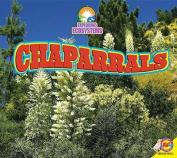 Chaparrals (Exploring Ecosystems