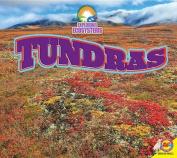 Tundras (Exploring Ecosystems