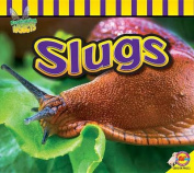 Slugs (Fascinating Insects)