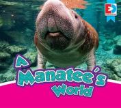 A Manatee's World