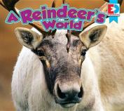 A Reindeer's World