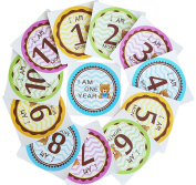 Best Baby Monthly Milestone Stickers 1-12 Months for Baby Boy or Baby Girl by MoM-me 10cm x 10cm