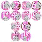 GREY BABY PINK grey ELEPHANTS Baby Month By Month Stickers - Baby Month Onesie Stickers Baby Shower Gift Photo Shower Stickers