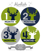 12 Monthly Baby Stickers, Deer, Antlers, Boy, Baby Belly Stickers, Monthly Onesie Stickers, First Year Stickers Months 1-12, Chevron, Green, Lime, Blue, Navy, Grey, Grey, Woodland, Baby Boy