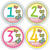 Baby Stickers - Baby Monthly Stickers - Baby Girl Month Stickers - Baby Shower Gift