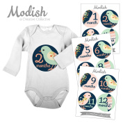 12 Monthly Baby Stickers, Birds, Flowers, Feathers, Girl, Baby Belly Stickers, Monthly Onesie Stickers, First Year Stickers Months 1-12, Navy, Blue, Pink, Baby Girl