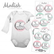 12 Monthly Baby Stickers, Pink, Grey, & Mint, Girl, Baby Belly Stickers, Monthly Onesie Stickers, First Year Stickers Months 1-12, Pink, Grey, Mint, Baby Girl