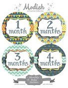 12 Monthly Baby Stickers, Boy, Baby Belly Stickers, Monthly Onesie Stickers, First Year Stickers Months 1-12, Tribal, Arrows, Chevron, Navy, Blue, Lime Green, Green, Orange, Baby Boy
